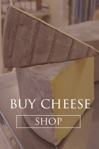 Buy Cheese